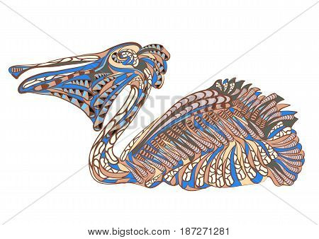 ethnic pelican isolated on a white backgroud