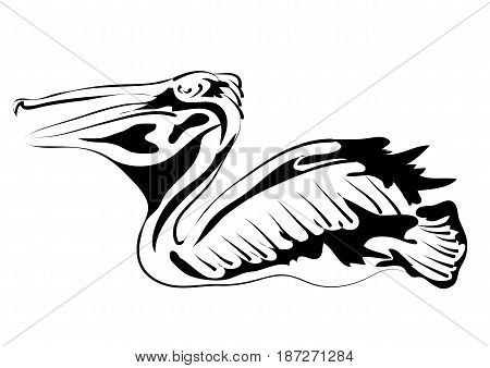 pelican silhouette isolated on a white background