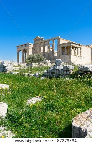 Erechtheion temple with green grass over clear blue sky in Acropolis of Athens, Greece
