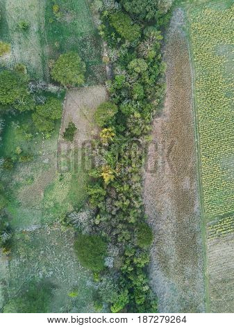 Agriculture Green Field Above View