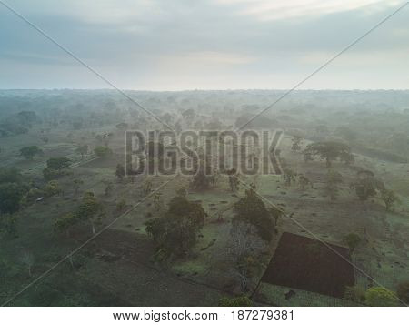 Mist In Agriculture Field