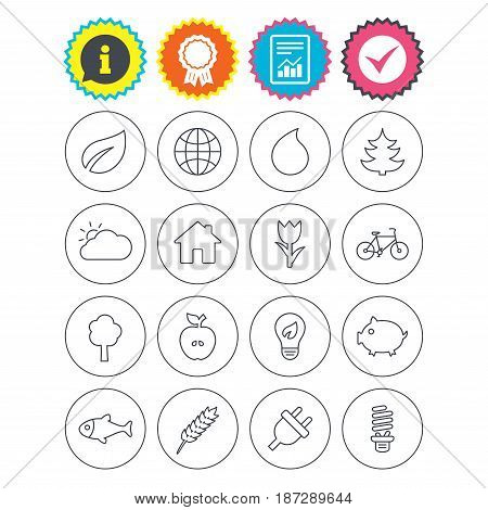 Report, information and award signs. Nature and Eco icons. Trees, leaf and tulip or rose flower. Planet and water drop. Energy saving lamp, electric plug and house building. Check tick symbol. Vector
