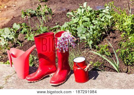 Gardening Tools Outdoor In Garden