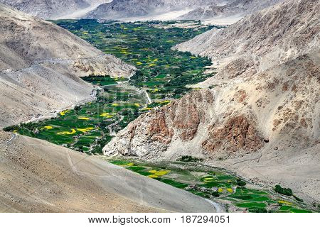 Mountain valley: high mountains are brown the river bends along the bottom of the gorge and along the river bed numerous trees fields and small houses small villages the Himalayas Northern India.