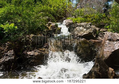 Waterfall On A Rocks Of A Botanic Garden In Chicago
