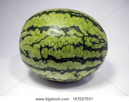 Fresh Organic Summer Watermelon sideways on Display