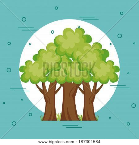 Trees over white and teal background. Vector illustration.