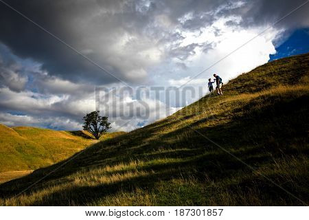 Father and son on a hilltop, holding hands.
