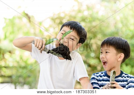 Boy Play With Plant