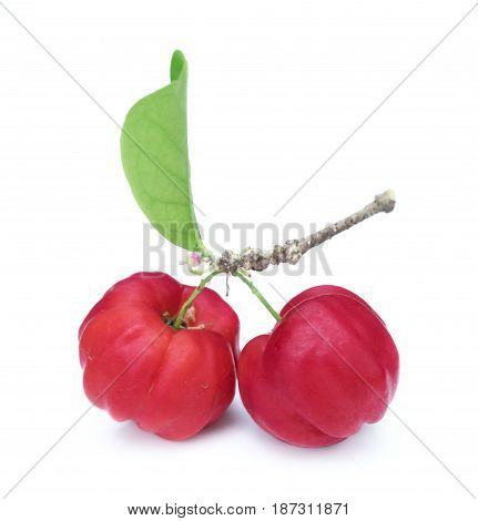 Acerola Fruit Close Up On Background.