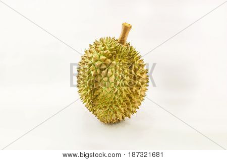 close-up view of durian isolated on white background king of the fruit but smelly in Thailand and south east asia; selective focus