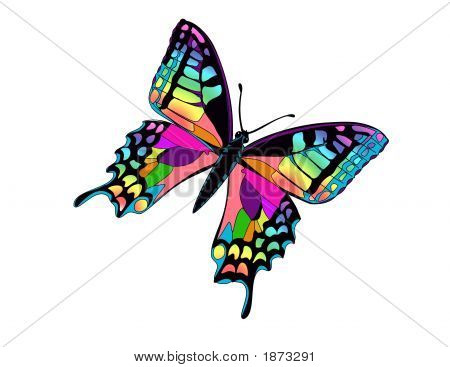 Colorful Butterfly Illustration Over White.