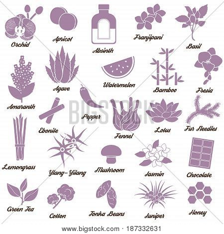Collection of icons for aromatic plants, herbas and woods for essense oils production. Perfume fragrance aroma ingredients.