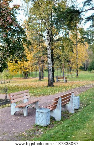 Benches in the autumn park of Sosnovka, St. Petersburg. Soft focus