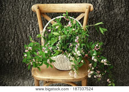 Wicker basket with branches of blooming tree flowers on wooden chair