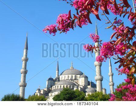 Turkish Landmarks - Springtime At The Sultan Ahmet Mosque - Istanbul