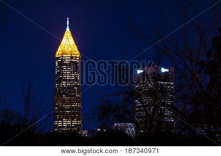 Night view of illuminated skyscrapers of Midtown Atlanta through branches USA