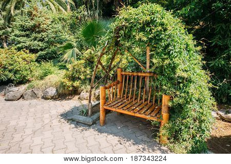 Bench Made Of Bamboo In A Beautiful Summer Park With Lush Vegetation Varied. Sunny Day In Botanical Garden In Batumi, Adjara Georgia.