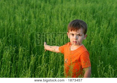 Sight Of The Boy Among A Green Grass In The Afternoon