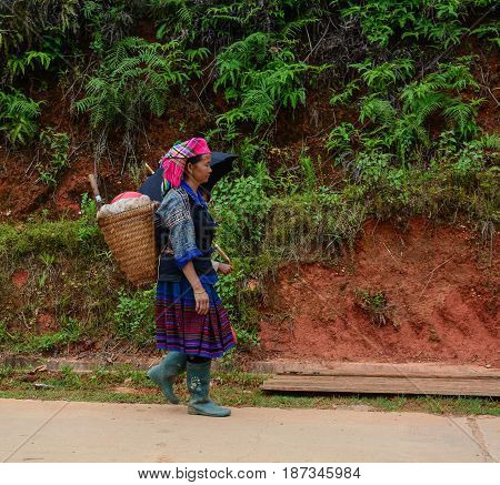 Hmong People Walking On The Mountain Road