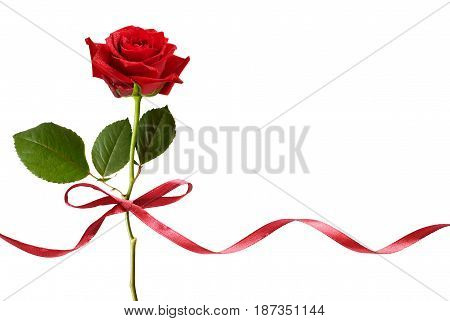 Smal red silk ribbon bow and red rose flower isolated on white