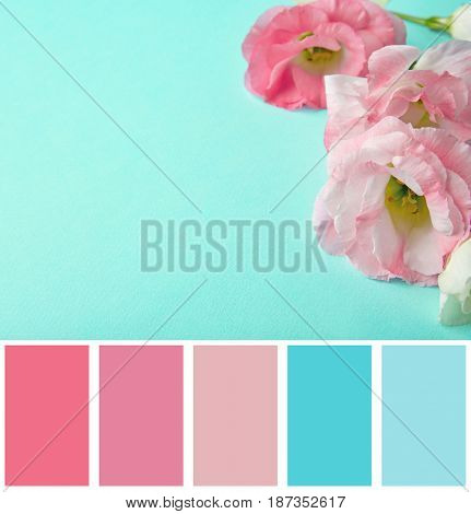 Mint color matching and beautiful flowers, closeup