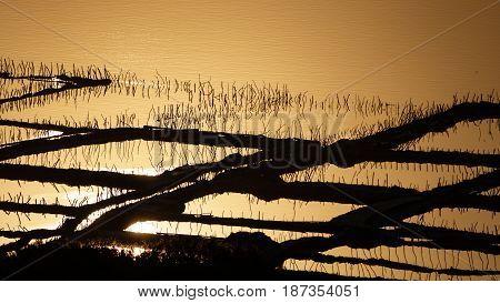 Vintage saltmine at sunset with orange water