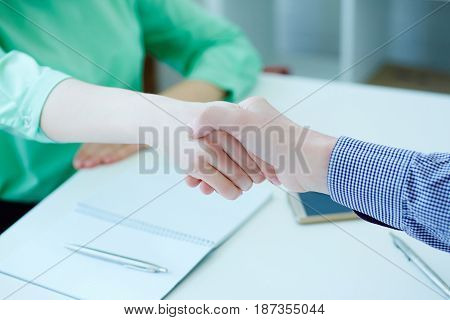 Male and female handshake in office. Serious business and partnership concept. Partners made deal sealed with handclasp.