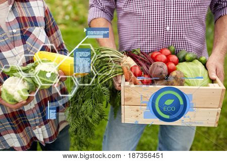 organic farming, agriculture and people concept - senior couple with box of vegetables at farm