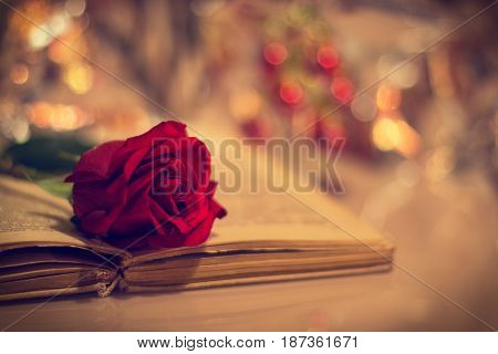 Romantic still life with a red rose and a book.
