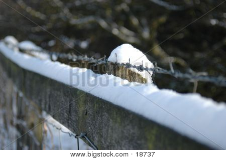 Snowy Barbed Fence