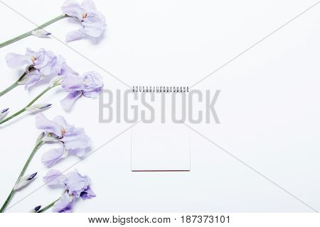 Blue Flowers And Notebook Lie On A White Background