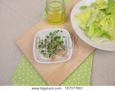 Basil sprouts, salad on plate and olive oil