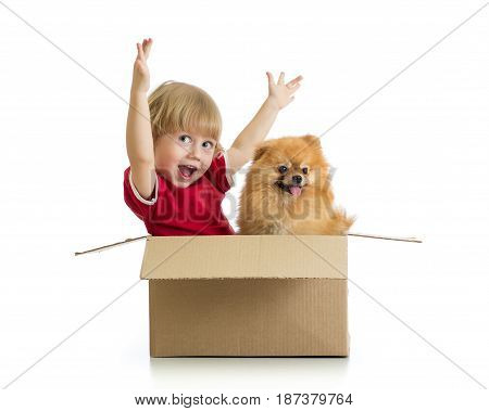 Cheerful child boy and dog in cardbox isolated on white background