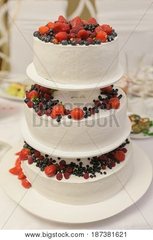 Wedding Cake In Rustic Style.