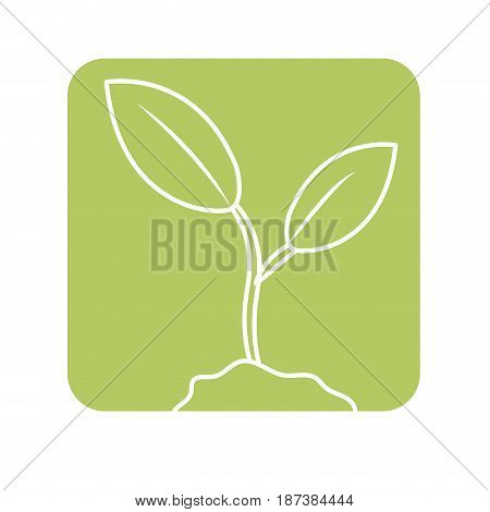 label cute ecology plant with earth, vector illustration design