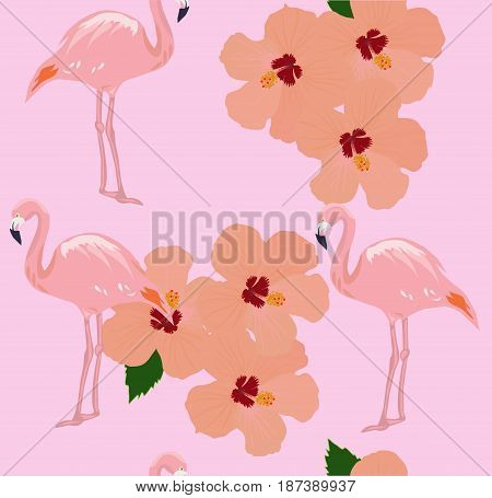 vector illustration of seamless tropical background with flamingos pink tropical hibiscus flowers