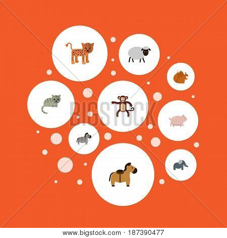 Flat Zebra, Horse, Bishop And Other Vector Elements. Set Of Animals Flat Symbols Also Includes Gorilla, Squirrel, Predator Objects.