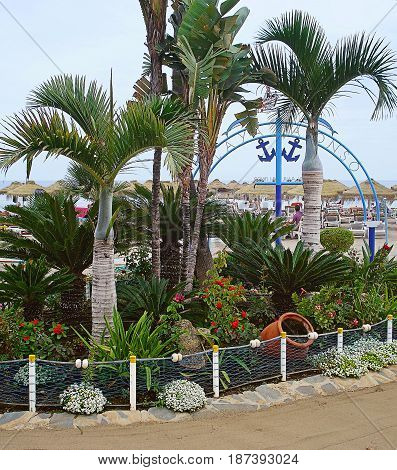 Oases from bright flowers and trees decorate beaches of the resort city of Torremolinos
