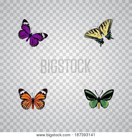 Realistic Checkerspot, Monarch, Butterfly And Other Vector Elements. Set Of Beauty Realistic Symbols Also Includes Monarch, Orange, Green Objects.