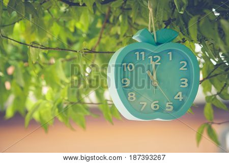Waste of Time Concept : Alarm clock hanging on green branches tree at outdoor garden.