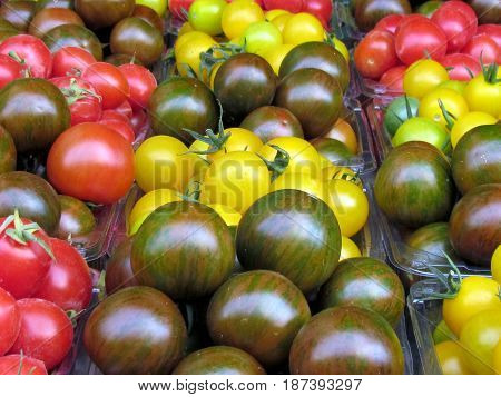 Yellow red and brown cherry tomatoes on bazaar in Tel Aviv Israel