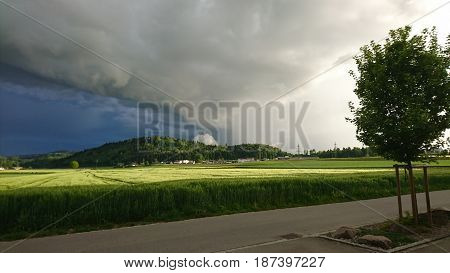 Fields before the storm - heavy rain was incoming