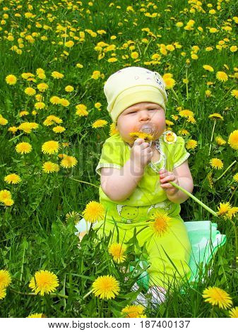 child in a green suit sitting on a meadow of dandelions