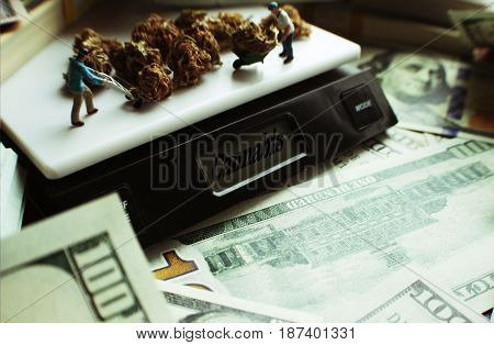 Cannabis Profits On Scale High Quality Stock Photo
