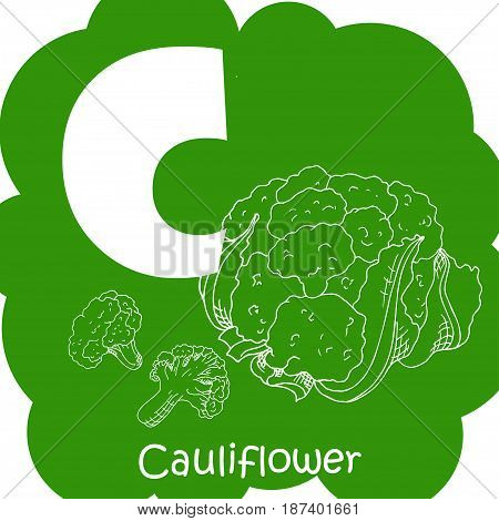 Alphabet for kids with vegetables. Healthy letter abc C-Cauliflower.
