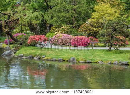A path meanders through a garden in Seattle Washington.