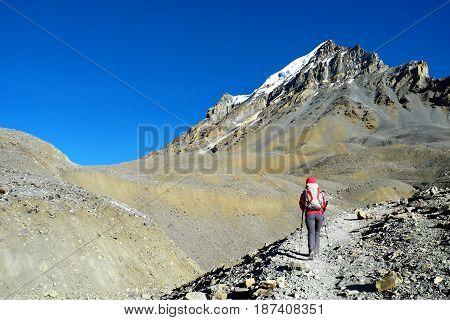 Young girl on the way to Thorong La Pass on Annapurna Circuit Trek Nepal.
