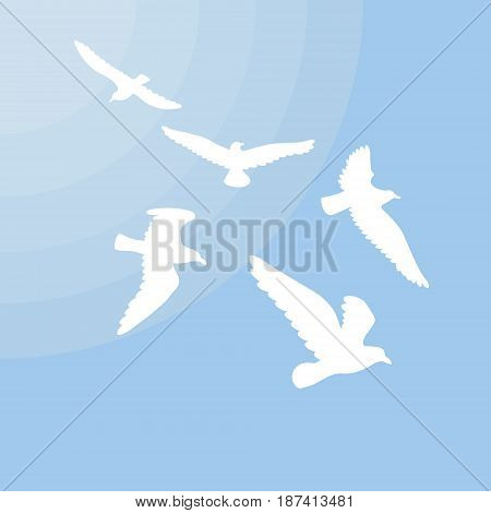 White gulls silhouettes concept with group of flying birds and sun on blue light background vector illustration