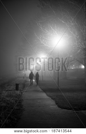 Walk in the misty partk people silhouettes in the autumn mist